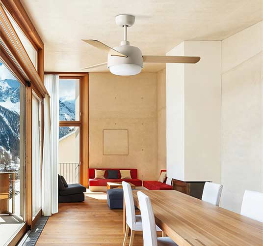 Ceiling fans with winter mode